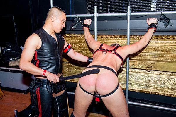 Gay comix online