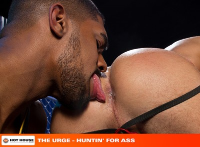 The Urge: Hunting' For Ass